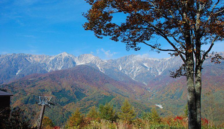 白馬岩岳マウンテンリゾート&白馬五竜高山植物園